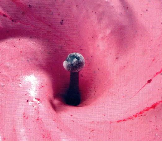 espuma-de-frutas-congeladas