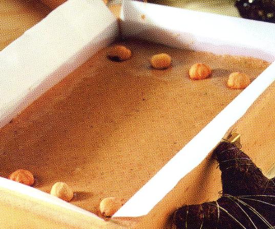 turron-blando-de-avellanas